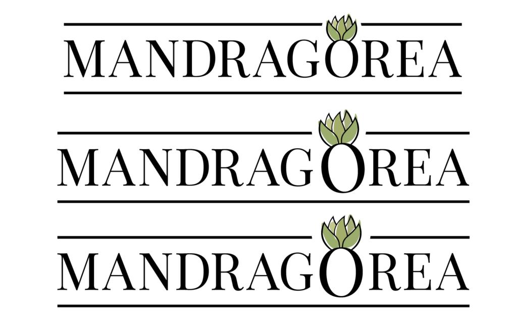 Mandragorea logo